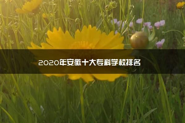 2020年安徽十大专科学校排名