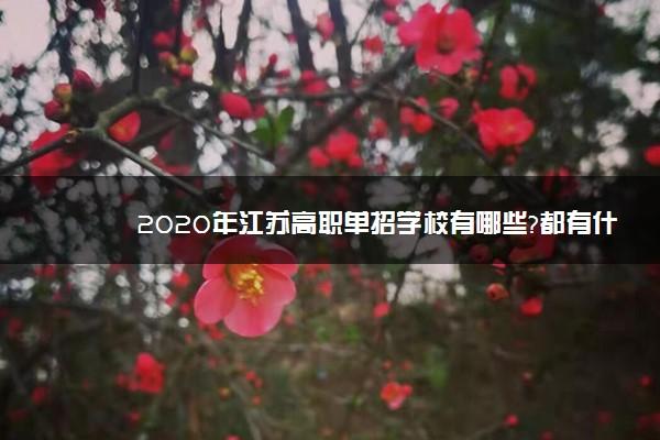 2020年江苏高职单招学校有哪些?都有什么学院名单