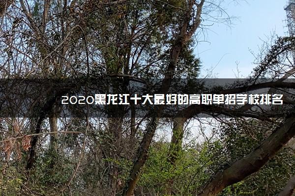 2020黑龙江十大最好的高职单招学校排名