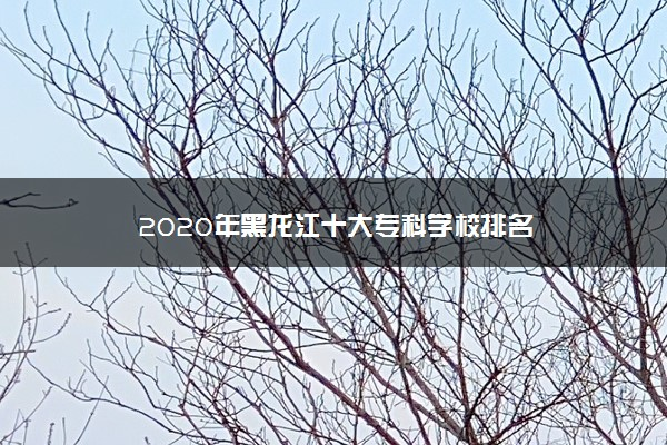 2020年黑龙江十大专科学校排名