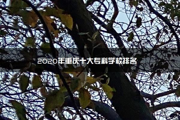 2020年重庆十大专科学校排名