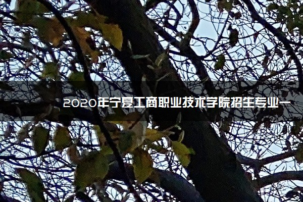 2020年宁夏工商职业技术学院招生专业一览表