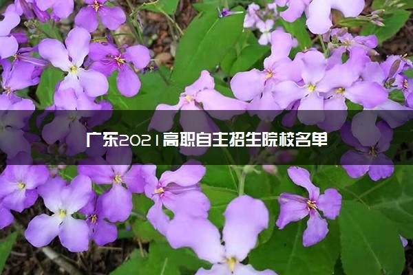 广东2021高职自主招生院校名单