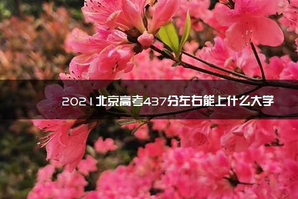 2021北京高考437分左右能上什么大学