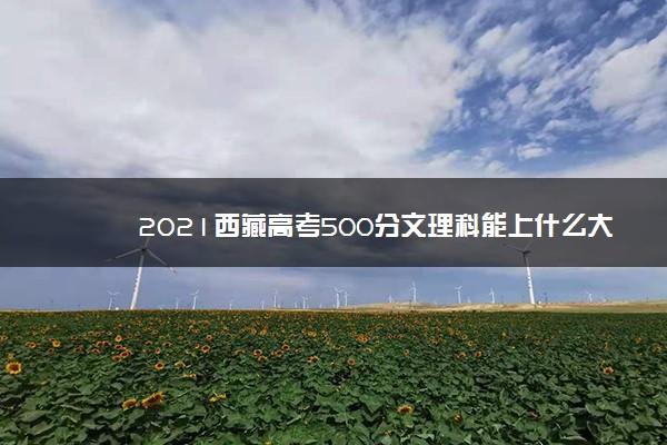 2021西藏高考500分文理科能上什么大学