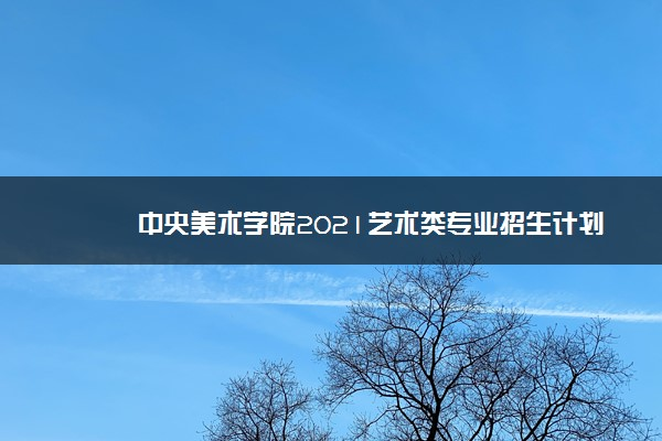 中央美术学院2021艺术类专业招生计划
