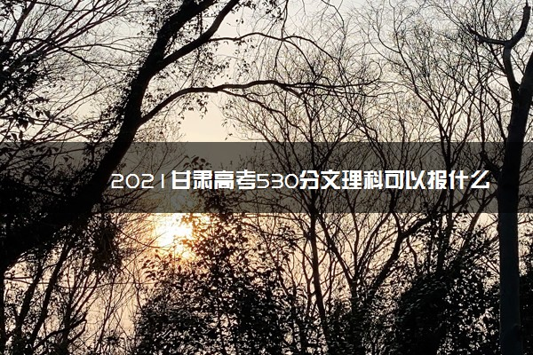 2021甘肃高考530分文理科可以报什么大学