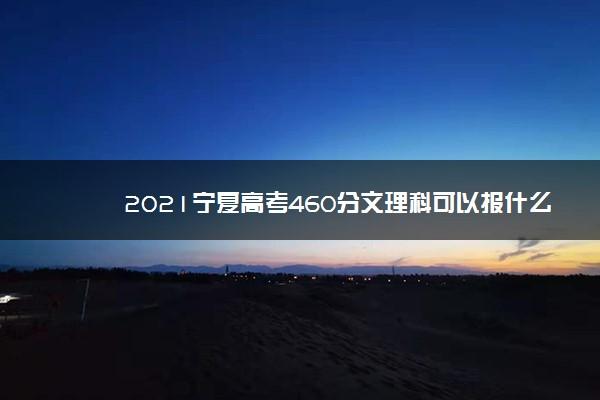 2021宁夏高考460分文理科可以报什么大学