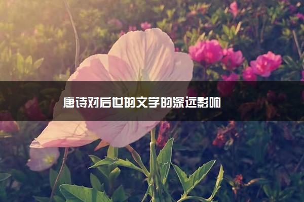 唐诗对后世的文学的深远影响
