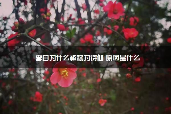 李白为什么被称为诗仙 原因是什么