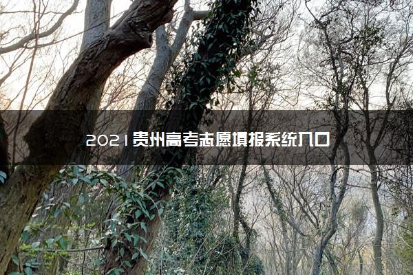 2021贵州高考志愿填报系统入口