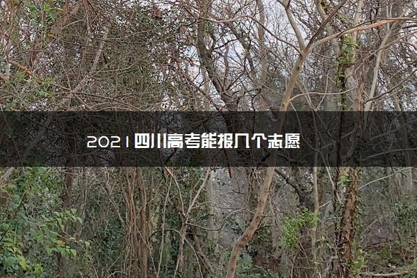 2021四川高考能报几个志愿