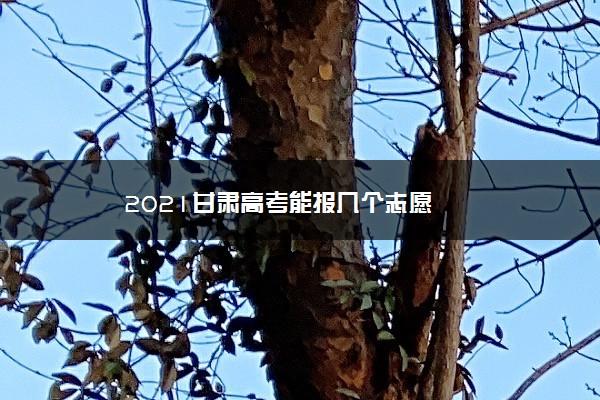 2021甘肃高考能报几个志愿