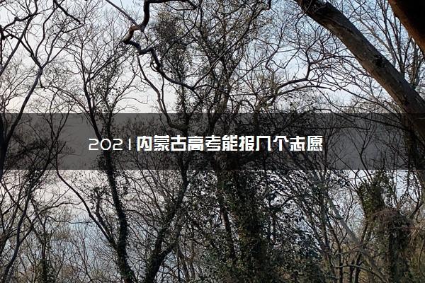 2021内蒙古高考能报几个志愿