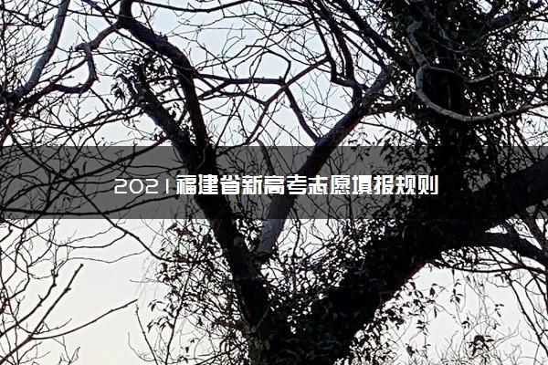 2021福建省新高考志愿填报规则