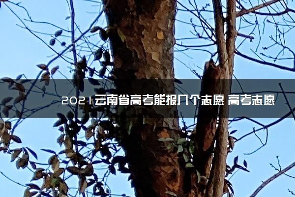 2021云南省高考能报几个志愿 高考志愿填报数量