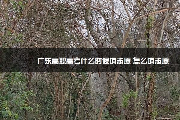 广东高职高考什么时候填志愿 怎么填志愿