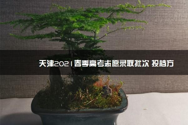 天津2021春季高考志愿录取批次 投档方式是什么