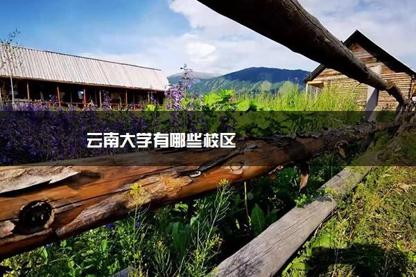 云南大学有哪些校区