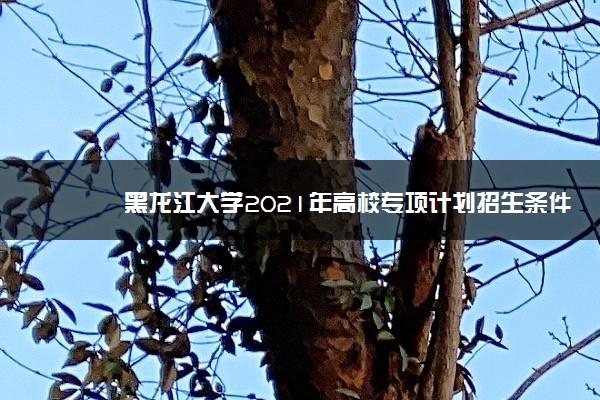 黑龙江大学2021年高校专项计划招生条件及计划