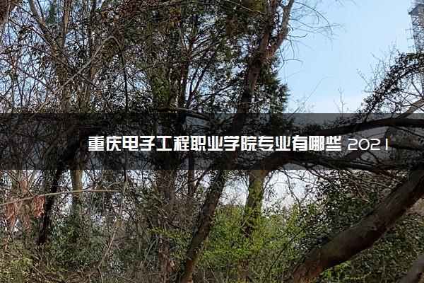 重庆电子工程职业学院专业有哪些 2021招生专业一览
