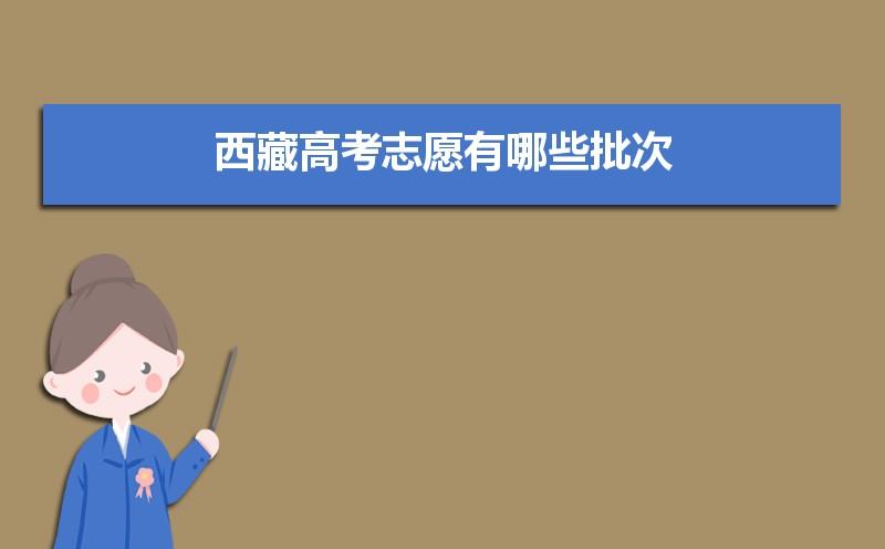2021年西藏高考志愿有哪些批次,西藏高考志愿各批次分数线多少分