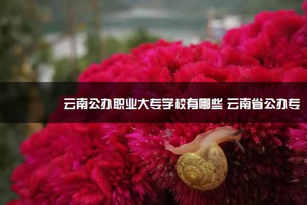 云南公办职业大专学校有哪些 云南省公办专科院校名单