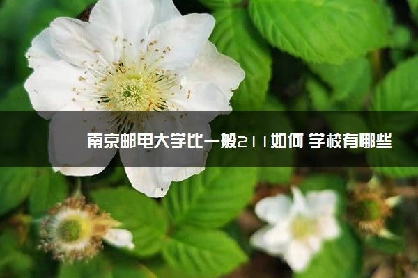 南京邮电大学比一般211如何 学校有哪些优势学科