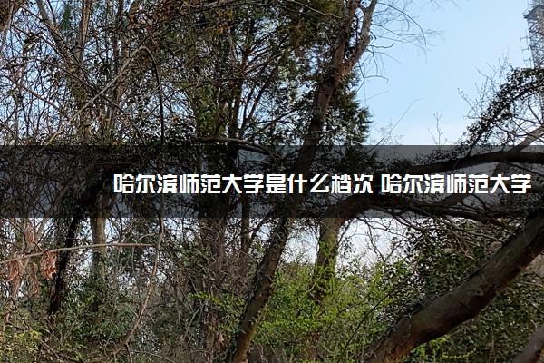 哈尔滨师范大学是什么档次 哈尔滨师范大学怎么样