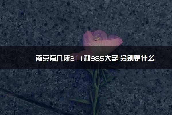南京有几所211和985大学 分别是什么