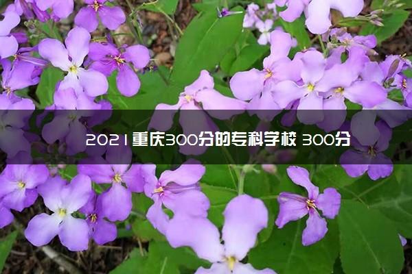 2021重庆300分的专科学校 300分能上什么学校