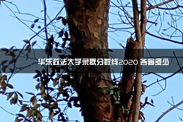 华东政法大学录取分数线2020 各省多少分录取