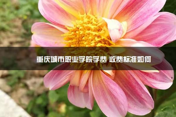 重庆城市职业学院学费 收费标准如何