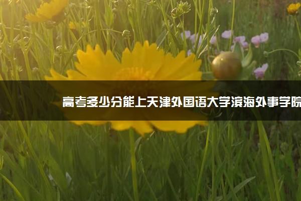 高考多少分能上天津外国语大学滨海外事学院 2020录取分数线是多少
