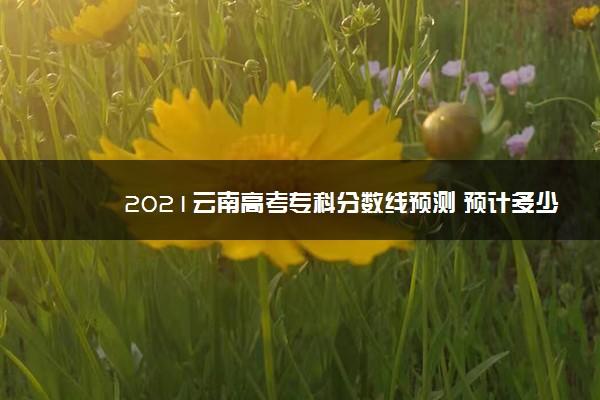 2021云南高考专科分数线预测 预计多少分录取