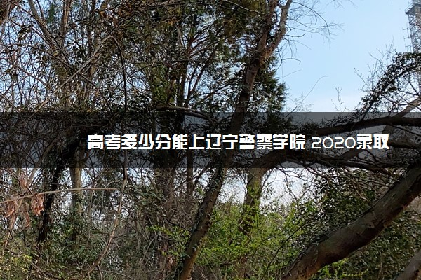 高考多少分能上辽宁警察学院 2020录取分数线是多少
