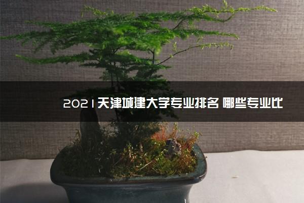 2021天津城建大学专业排名 哪些专业比较好