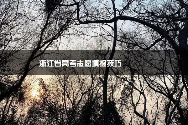 浙江省高考志愿填报技巧