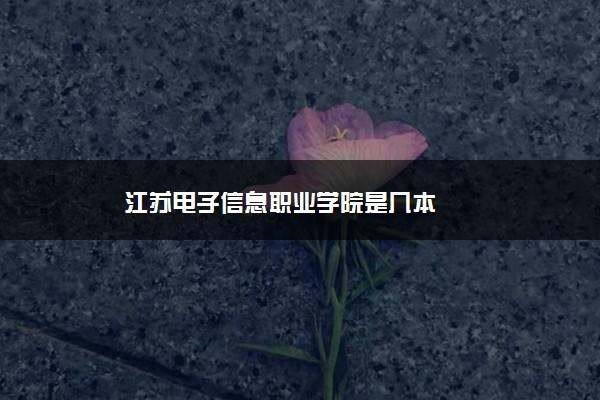 江苏电子信息职业学院是几本