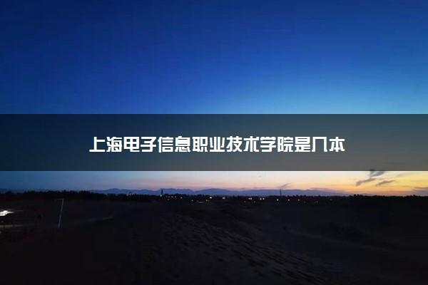 上海电子信息职业技术学院是几本