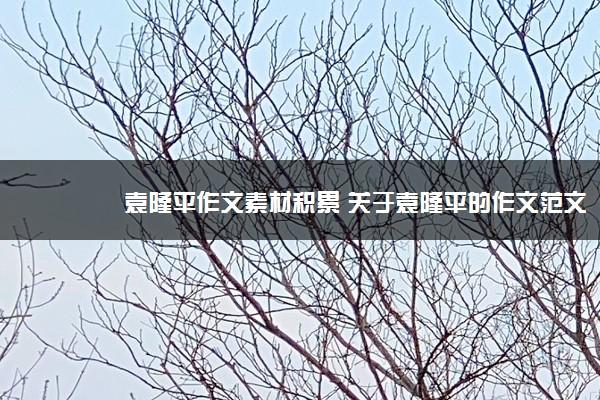 袁隆平作文素材积累 关于袁隆平的作文范文