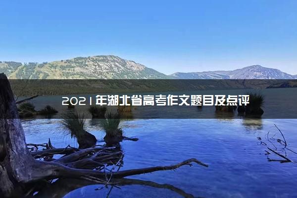 2021年湖北省高考作文题目及点评
