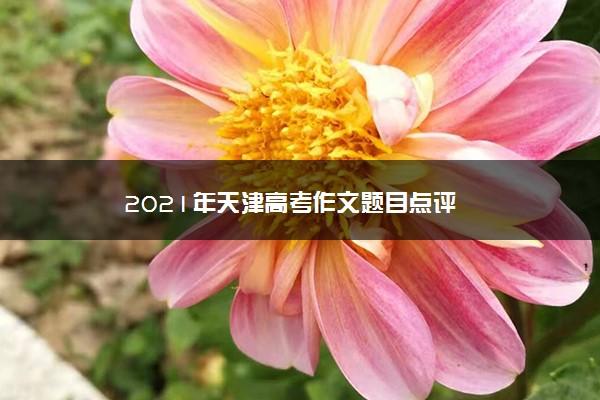 2021年天津高考作文题目点评