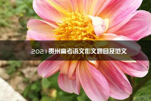 2021贵州高考语文作文题目及范文