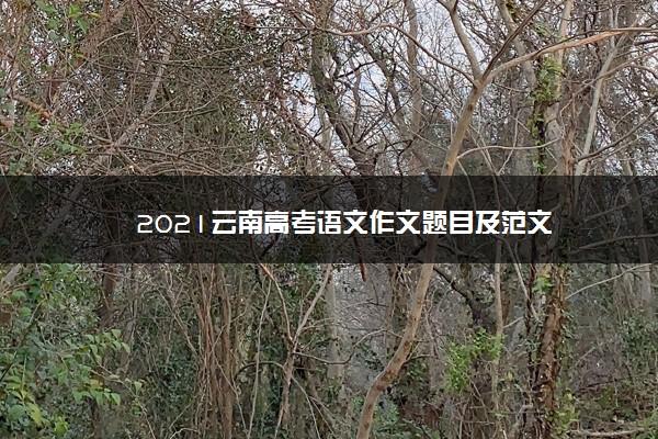 2021云南高考语文作文题目及范文
