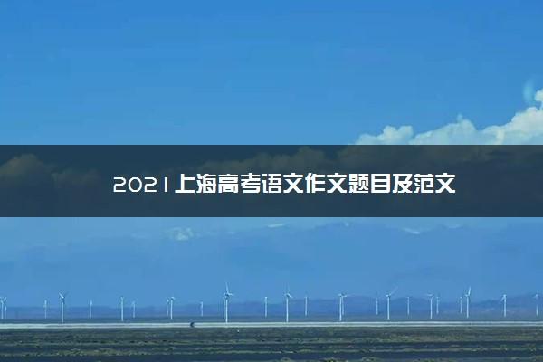 2021上海高考语文作文题目及范文