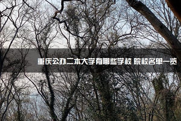 重庆公办二本大学有哪些学校 院校名单一览