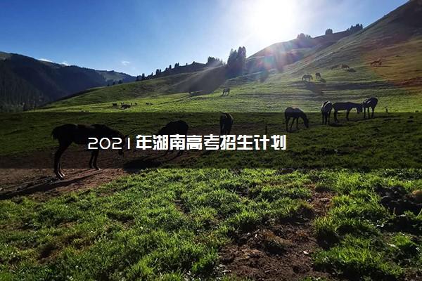2021年湖南高考招生计划
