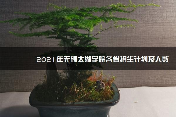 2021年无锡太湖学院各省招生计划及人数