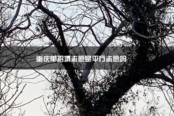 重庆单招填志愿是平行志愿吗